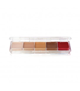 TATTOO COVER ALCOHOL PALETTE